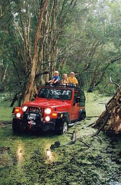 I remember all my parents jeep trips they were all very memorable especially the ones where the kids got out of the jeep and walked because my dad might die going on the trail he's on Jeep Tj, Jeep Wrangler Tj, Jeep Wrangler Unlimited, Jeep Truck, Jeep Mods, 4x4, Jeep Baby, Off Road Adventure, Cool Jeeps