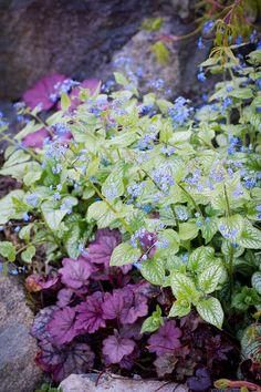 solrum trädgård- trädgårdsblogg|trädgårdsinspiration|trädgårdsprojekt