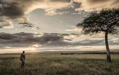 Kenyan Nature Reserve Photography