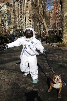oh hi, just walking the dog
