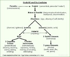 Évolution de Prakriti