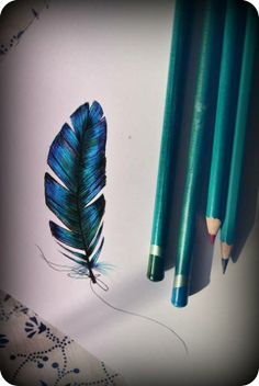 Blue Feather pencil drawing More here : https://www.facebook.com/pages/Olenka/647167888679052