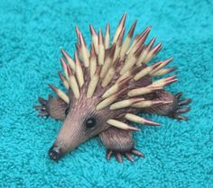 """Book 5  Down Under  """"Echidna"""" for the #FriesenProject by Laurie Grassel"""