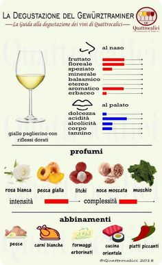 Impariamo a degustare il Gewürztraminer su Quattrocalici. Wine And Cheese Party, Wine Tasting Party, Red Wine Benefits, Barefoot Wine, Riesling Wine, Sweet White Wine, Best Red Wine, Wine Education, Wine Guide