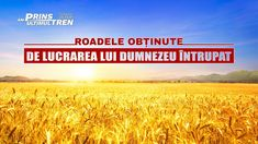 "Film creștin subtitrat ""Am prins ultimul tren"" Segment 4 Films Chrétiens, Kingdom Of Heaven, Videos, Youtube, Movie, Train, Bible, Word Of God, Catholic"
