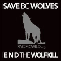 2/11/15 British Columbia, Canada: Save B.C. Wolves As you read this, wolves in British Columbia, Canada are being shot at by hunters in helicopters.   This is an ill-conceived plan to save endangered caribou in B.C..  The wolves are not responsible for the dwindling caribou numbers; habitat loss and human encroachment are. But wolves are taking the blame and paying the price.