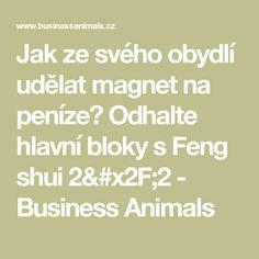 Jak ze svého obydlí udělat magnet na peníze? Odhalte hlavní bloky s Feng shui 2/2 - Business Animals