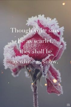 """Though your sins be as scarlet, they shall be as white as snow."" - Isaiah 1:18 Nothing but the blood of Jesus can wash away your sin. Only through Jesus' blood you can be saved. ""Oh precious is the flow, that made me white as snow. No other fount I know, nothing but the blood of Jesus."""