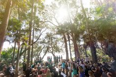 Australian Bush Wedding at the Green Cathedral in Teona. Palm Wedding, Bush Wedding, Forest Wedding, Wedding Tips, Wedding Details, Destination Wedding, Dream Wedding, Wedding Stuff, Outdoor Wedding Venues