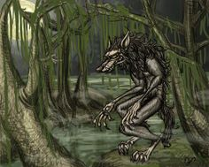 The Loup-Garou, or Rougarou, of Louisiana folklore. In the Cajun legends, the creature is said to prowl the swamps around Acadiana and Greater New Orlea. Mythological Creatures, Fantasy Creatures, Mythical Creatures, Native American Tribes, Native Americans, Creatures Of The Night, Cryptozoology, Prehistoric Animals, Urban Legends