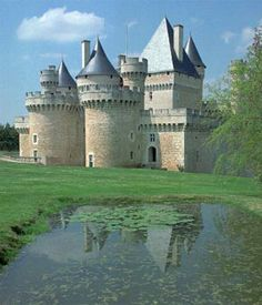A beautiful castle in the Loire Valley....I'd like to go there one day:)