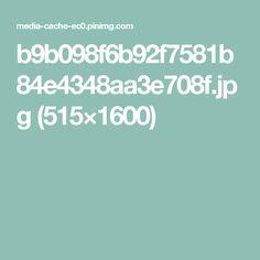 b9b098f6b92f7581b84e4348aa3e708f.jpg (515×1600)
