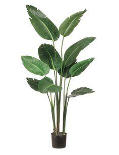 Bird of Paradise faux plant