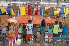 Bahia Shrine Circus Kissimmee, Florida  #Kids #Events