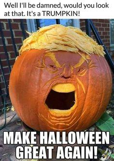 Halloween Meme 2020 Halloween Funnies | 's collection of 100+