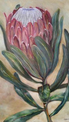 Protea  - Sue Smyth.  80x60  oil on canvas