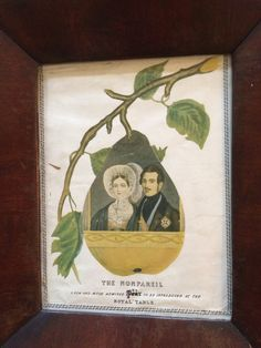 Print for the engagement of Victoria and Albert. The Nonpareil. A new and much admired Pear (Crossed out - Pair) to be introduced at the Royal Table 1839  Not quite like the other pins but so nice I couldn't resist. Apparently Nonpareil was a type of old English Apple that tasted like a pear??