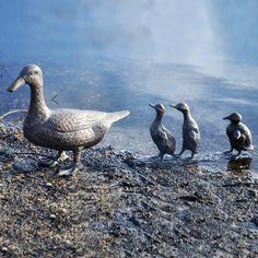 Duck With Ducklings Garden Ornament / Metal Sculpture