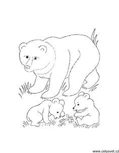 Omalovánka: Zvířata: Medvídek
