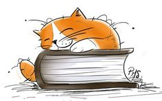 Cat and book illustration