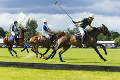 Get into the spirit and see a polo match when you study abroad in Buenos Aires. It's one of the most popular sports in the city with a history that stretches back many many years. This photograph was taken by Steve Mclaren.
