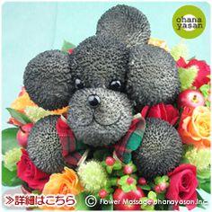 子犬のアレンジメント イヌポン・ブラッキー