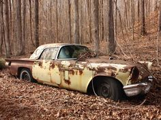 1957 Thunderbird  If I found this (or any Classic American car) just rusting away in the woods I'd teleport home and steal a flatbed to get it!