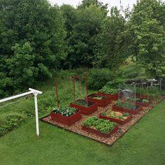 If you were looking for (rain garden), take a look below Farm Gardens, Small Gardens, Outdoor Gardens, Rain Garden, Lawn And Garden, Garden Solutions, Home Vegetable Garden, Organic Gardening Tips, Garden Landscape Design