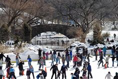 Each winter, New Yorkers and tourists flock to Central Park to lace up their skates and hit the ice at Wollman and Lasker rinks. While ice skating is now a favorite pastime, 19th-century Manhattan offered few places for winter revelers to skate on natural ice.