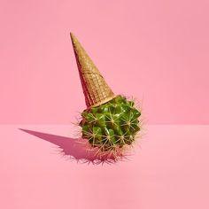 Heat Wave by Paloma Rincón