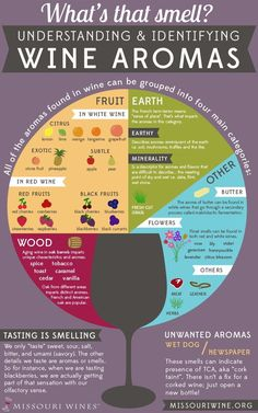 Wine Aromas from Missouri wineries. I loved how they used a wine glass with the different smells swirling above. It definitely is a very basic picture of different aromas of wines. Wein Poster, Wein Parties, Wine Facts, Wine Chart, Wine Tasting Party, Wine Tasting Notes, Tasting Room, Wine Education, Wine Guide