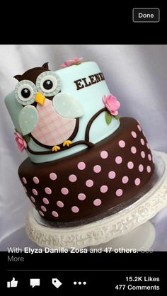 Blue and brown owl cake