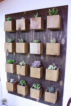 Urban Garden Make your own DIY Garden Wall perfect for succulents or other plants. This simple tutorial can be used for a BIG statement wall or a small accent piece. Vertical Garden Planters, Succulent Planter Diy, Diy Planters, Cacti And Succulents, Vertical Gardens, Planter Garden, Indoor Succulent Garden, Cactus Plants, Garden Plants