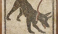 Mosaic of a Pompeii guard dog    http://www.theguardian.com/artanddesign/2013/mar/26/life-and-death-pompeii-review