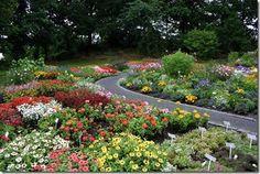 Botanic Garden Bergen, Norway