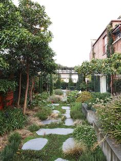Chris Cobbett and Jonathan Cebon - The Design Files Outdoor Plants, Outdoor Gardens, Landscape Design, Garden Design, Creative Landscape, Melbourne Garden, Landscaping On A Hill, Landscaping Melbourne, Landscaping Ideas