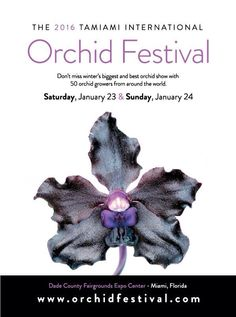 The best orchid show in Miami