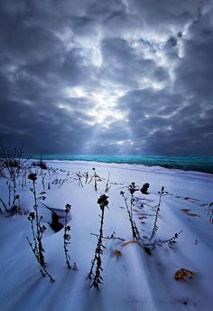 """""""Snowscape""""   Horizons by Phil Koch  Milwaukee, Wisconsin  Turning landscapes into portraits of nature."""