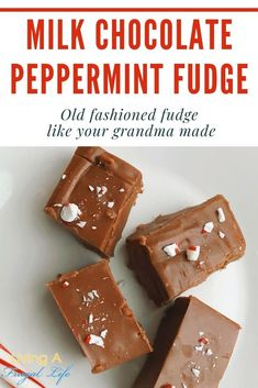 Old Fashioned Milk Chocolate Peppermint Fudge Recipe Easy Desserts, Delicious Desserts, Dessert Recipes, Holiday Recipes, Frugal Recipes, Holiday Crafts, Old Fashioned Fudge, Peppermint Fudge, Decadent Food