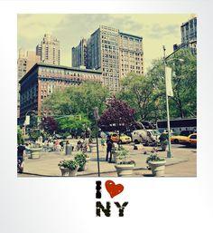 new york - new york city