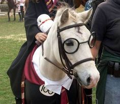 harry potter the hogwarts pony - This new weight loss solution has solved all my problems. I lost about 23 pounds fast without changing my diet. I hope this changes some lives like it has changed mine. http://hcgtrim4summer.com
