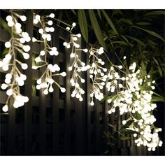 Rouge Living 480 LED White Curtain Cluster Budlights I/N 4351008 | Bunnings Warehouse