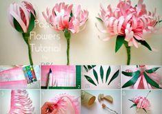 Picture - /soledadsuarezma/flores-de-papel/  BACK