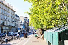 + Paris + France + Wanderlust + Seine