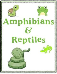 this set of freebies includes a total of 8 reptiles and amphibians pinterest amphibians. Black Bedroom Furniture Sets. Home Design Ideas
