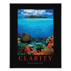 Clarity Reef Motivational Poster