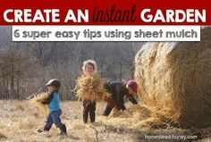 Create a new garden without disturbing the soil, via the sheet mulch or lasagna gardening method.