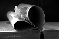 Book Heart B&W @jo_lindhe_photography