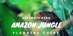 Everything you want to know about preparing & packing for the Amazon Jungle in Puerto Maldonado, Peru and the entire ecolodge experience at Refugio Amazonas.