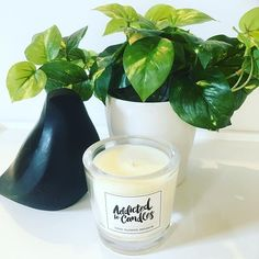 TIARE FLOWER INFUSION 🔥 A delicious blend of Tiare flower and hibiscus with notes of vanilla, coconut, mango and tangerine!! 🖤 #addictedtocandles #amazing #candles #fragrance #luxury #scentedcandles #homedecor #homefragrance #handpoured #homestyle #accessories #interiordecor #interiorinspiration #home #office #madewithlove #tropical #blackandwhite #gift #candlelover #etsy #etsyau #tiareflower #picoftheday